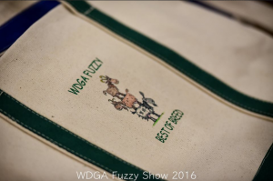 2016FuzzyShow4