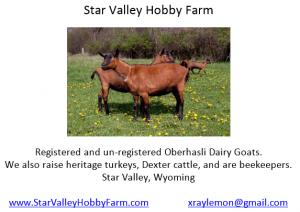 Star_Valley_Hobby_Farm