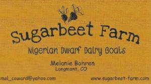 Sugarbeet